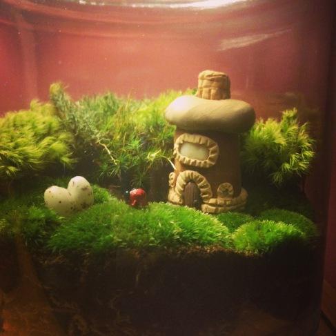 Fairy Garden by Amoret