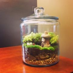 Fairy Terrarium at Work by Amoret