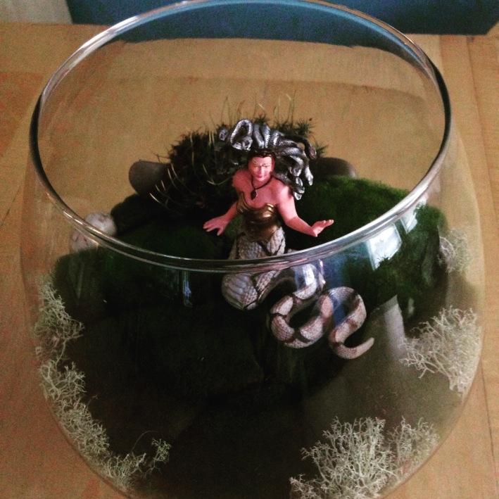 Image: Medusa Terrarium by Amoret