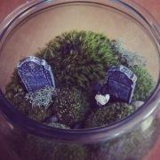Image: Graveyard Terrarium by Amoret